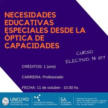 """Electiva N° 187 """"Necesidades educativas especiales desde la óptica de capacidades"""""""