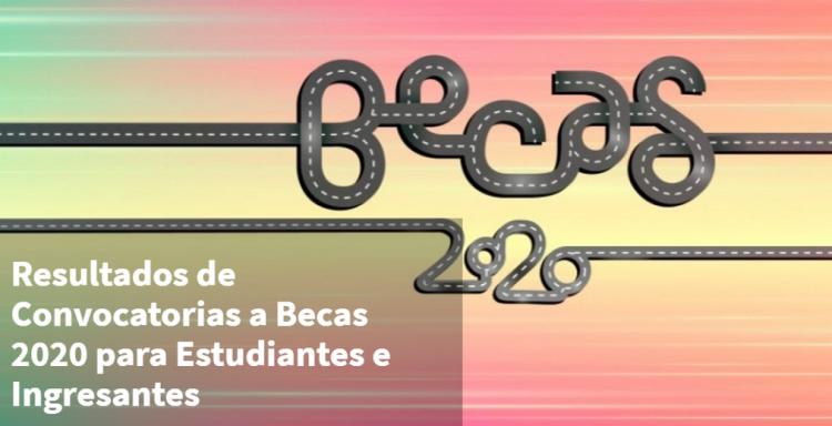 Resultados becas 2020 (estudiantes e ingresantes)