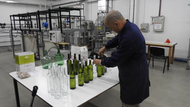 Destilación de grappa en la Planta Piloto de la FCAI