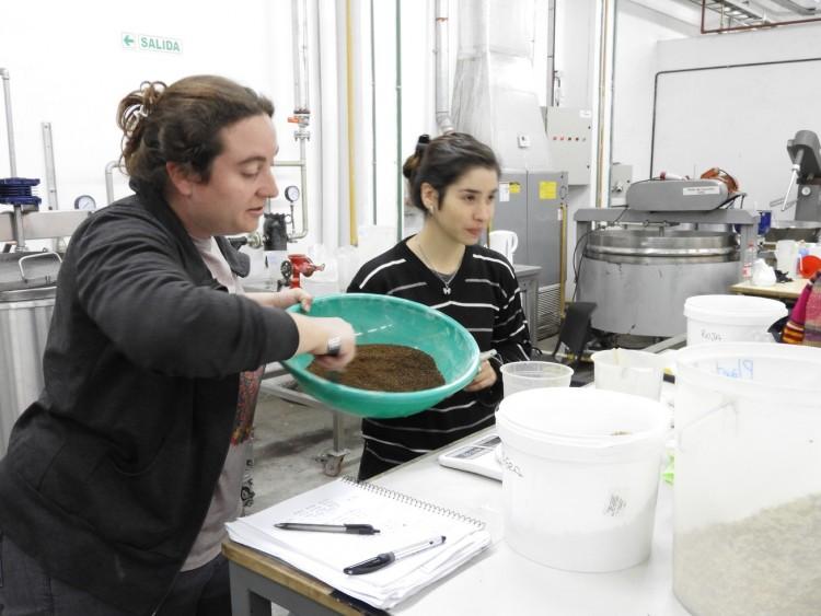 Elaboración de cerveza libre de gluten en la FCAI