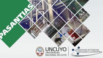 Pasantías para estudiantes avanzados de Ingeniería Química en Tassaroli