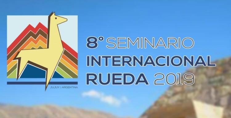 VIII Seminario Internacional de Educación a Distancia - Rueda 2019