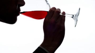 \Cavisar 2017\ - Cata de Vinos de San Rafael