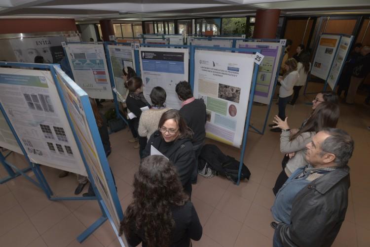 Exposición de pósters científicos